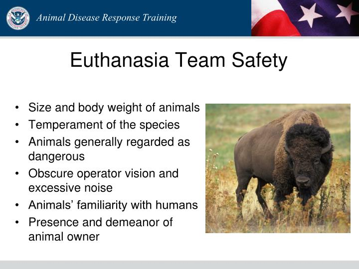 Euthanasia Team Safety