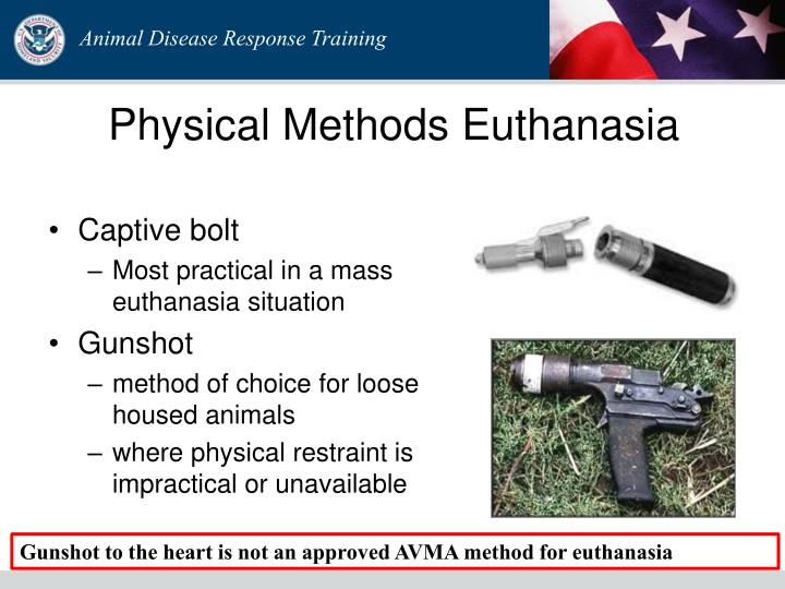 Physical Methods Euthanasia