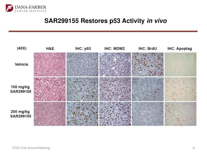 SAR299155 Restores p53 Activity