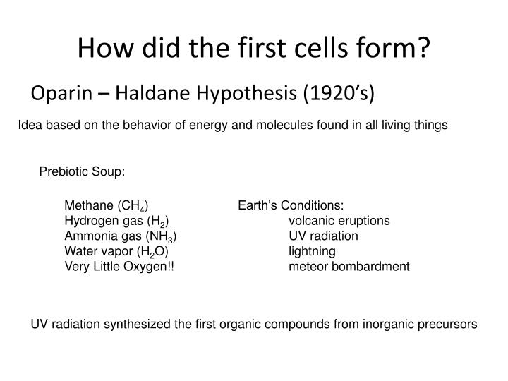 How did the first cells form?