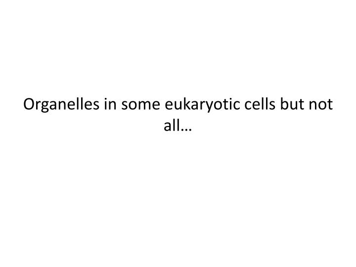 Organelles in some eukaryotic cells but not all…