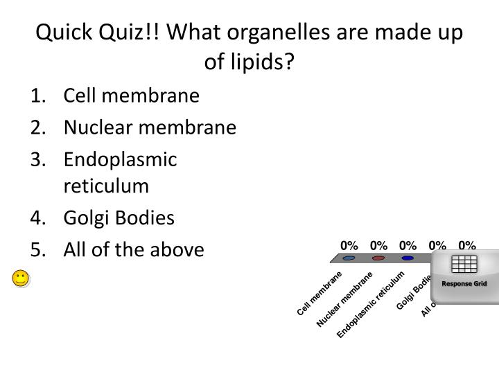 Quick Quiz!! What organelles are made up of lipids?