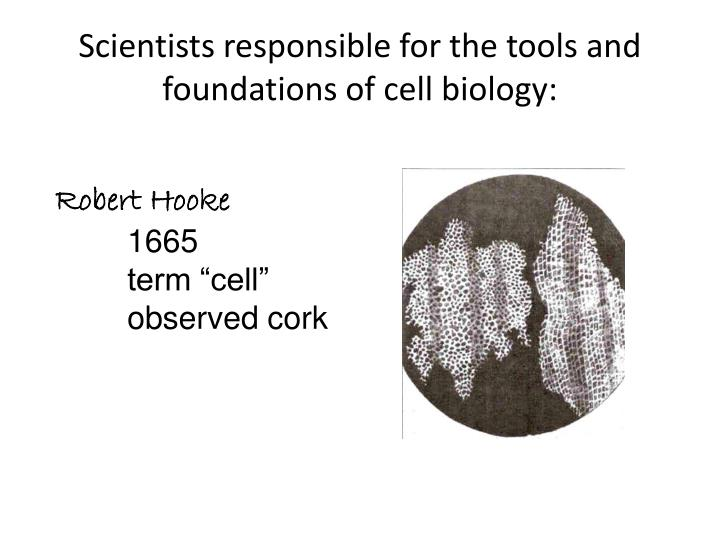 Scientists responsible for the tools and foundations of cell biology