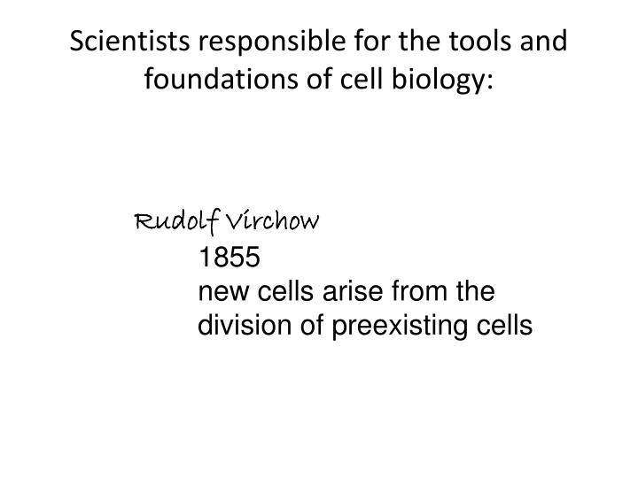 Scientists responsible for the tools and foundations of cell biology: