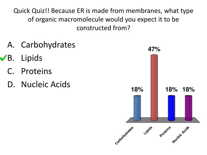 Quick Quiz!! Because ER is made from membranes, what type of organic macromolecule would you expect it to be constructed from?