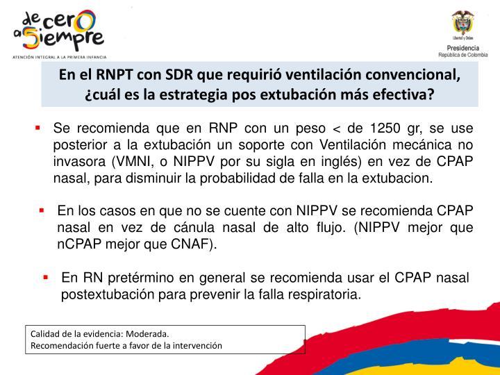 En el RNPT con SDR que requirió ventilación convencional, ¿cuál es la estrategia pos extubación más efectiva?