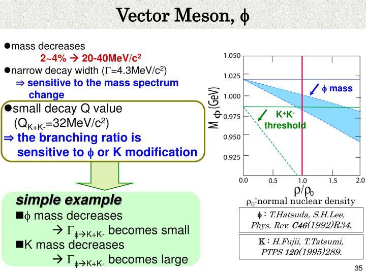 Vector Meson,