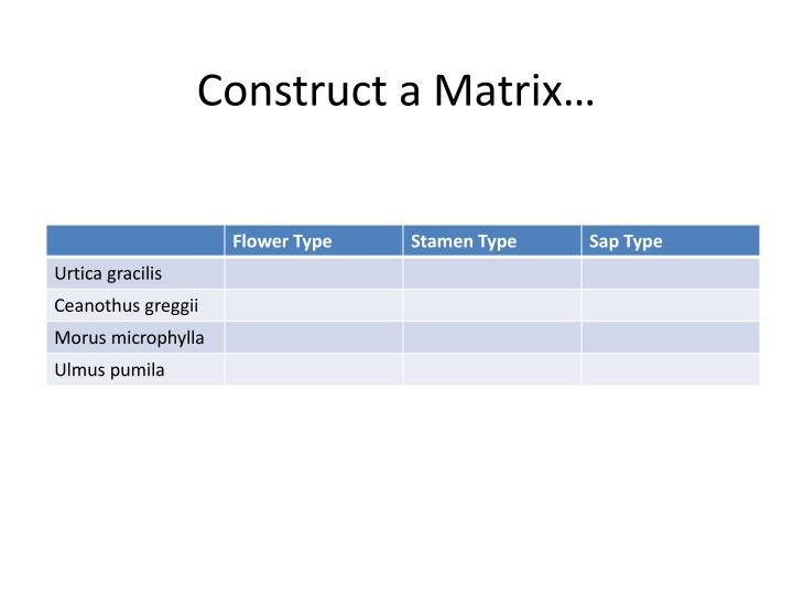 Construct a Matrix…