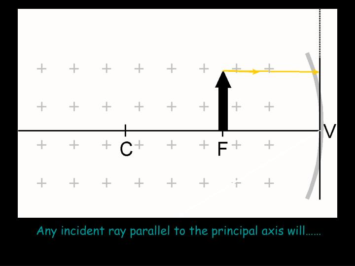 Any incident ray parallel to the principal axis will……