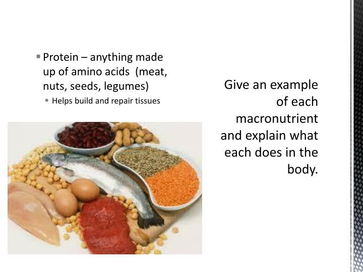Protein – anything made up of amino acids  (meat, nuts, seeds, legumes)