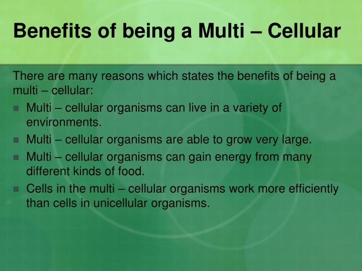 Benefits of being a Multi – Cellular