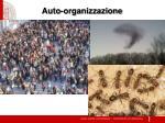 auto organizzazione