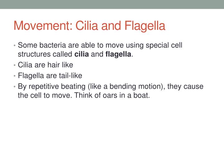 Movement: Cilia and Flagella
