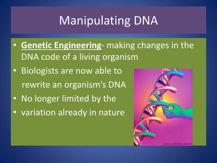 Manipulating DNA