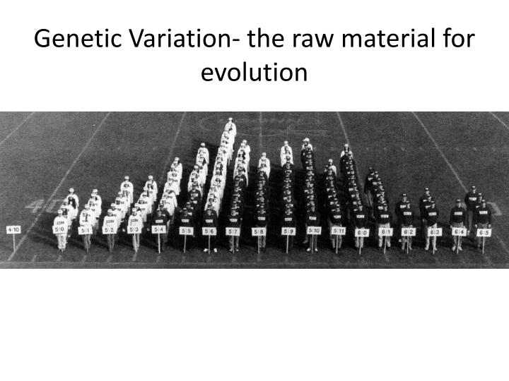 Genetic Variation- the raw material for evolution