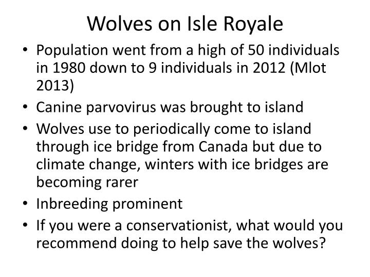 Wolves on Isle Royale