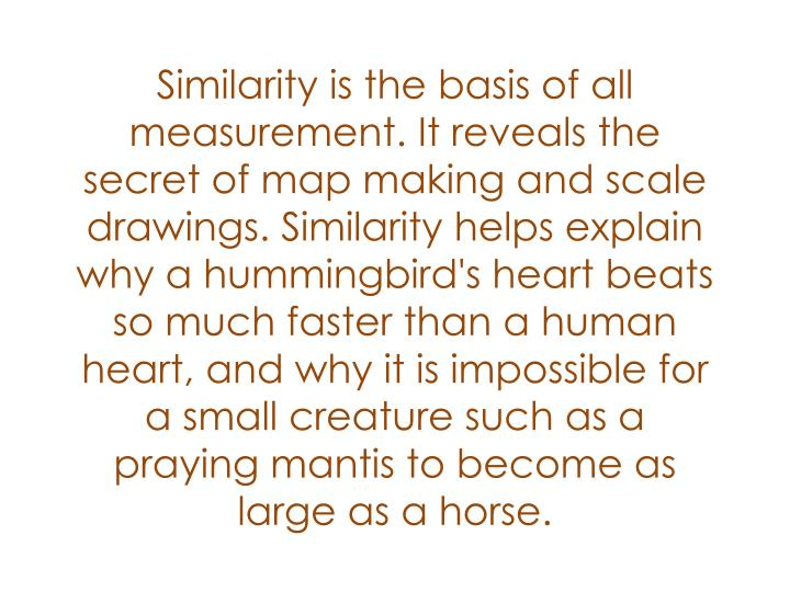 Similarity is the basis of all measurement. It reveals the secret of map making and scale drawings. Similarity helps explain why a hummingbird's heart beats so much faster than a human heart, and why it is impossible for a small creature such as a praying mantis to become as large as a horse.