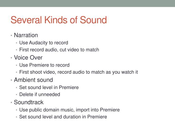 Several Kinds of Sound