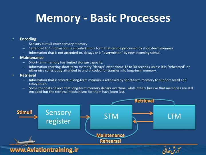 Memory - Basic Processes