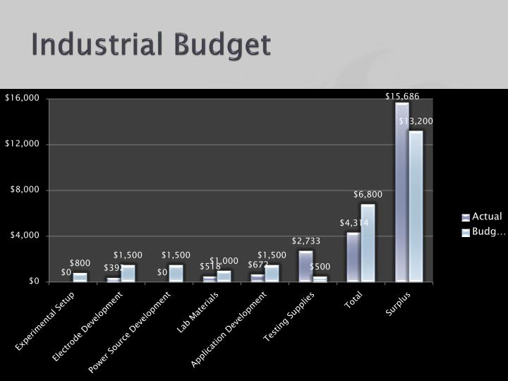 Industrial Budget