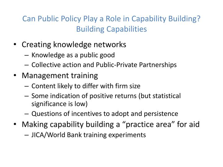 Can Public Policy Play a Role in Capability Building?