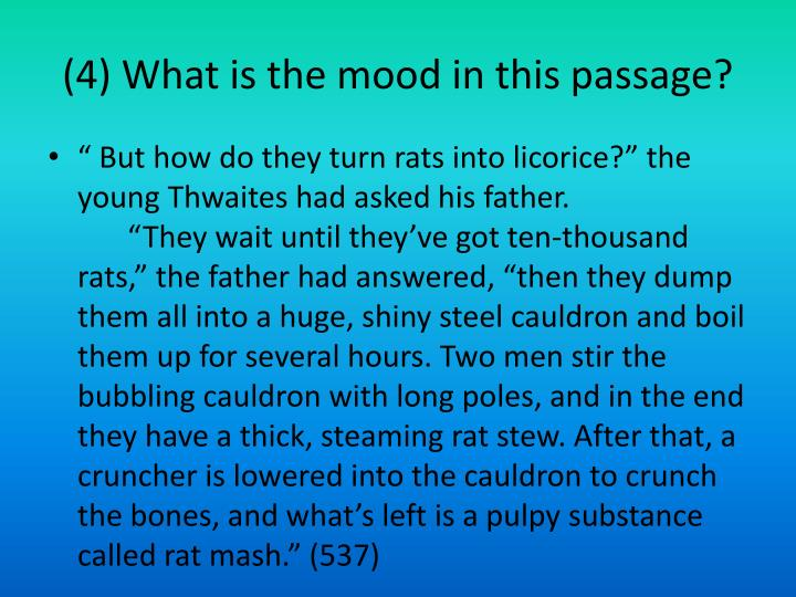 (4) What is the mood in this passage?