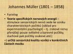 johannes m ller 1801 1858