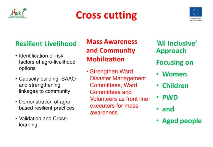 Cross cutting