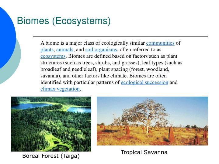 Biomes (Ecosystems)