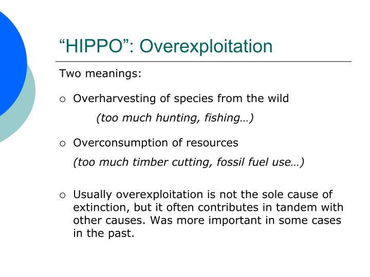 """""""HIPPO"""": Overexploitation"""