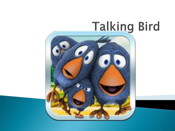 Talking bird