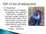 top 10 list of talking bird