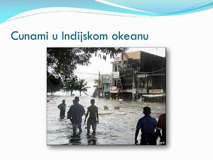 Cunami u Indijskom okeanu