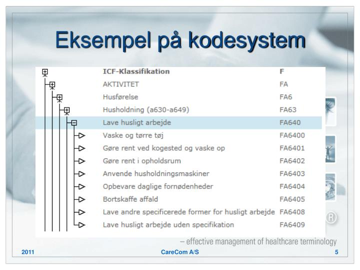 Eksempel på kodesystem