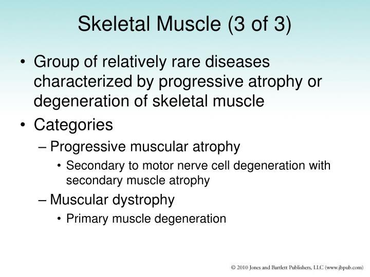Skeletal Muscle (3 of 3)