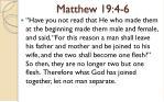 matthew 19 4 6