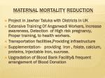 maternal mortality reduction