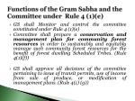 functions of the gram sabha and the committee under rule 4 1 e