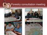 forestry consultation meeting