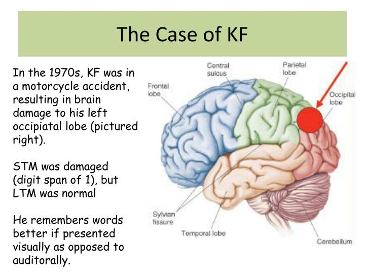 The Case of KF