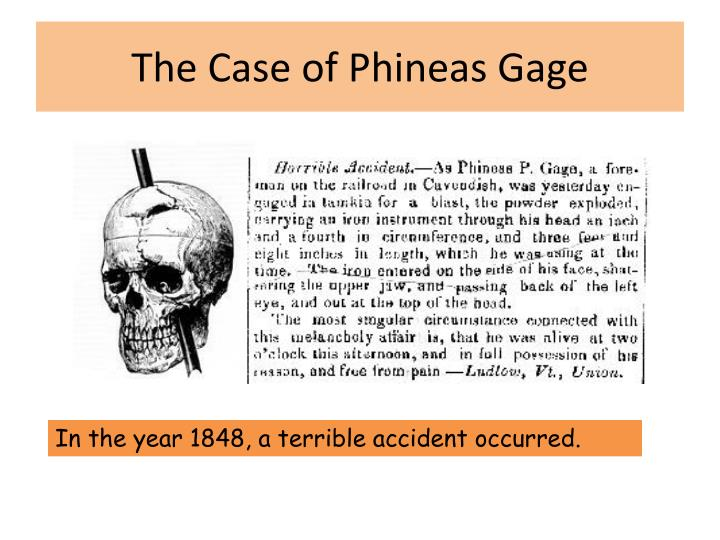 The Case of