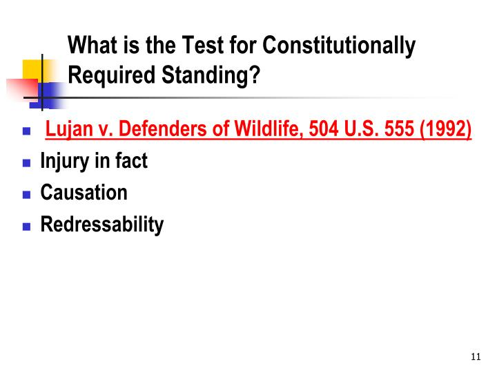 What is the Test for Constitutionally Required Standing?