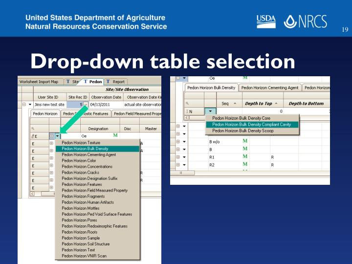 Drop-down table selection