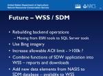 future wss sdm