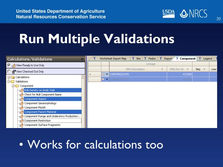 Run Multiple Validations