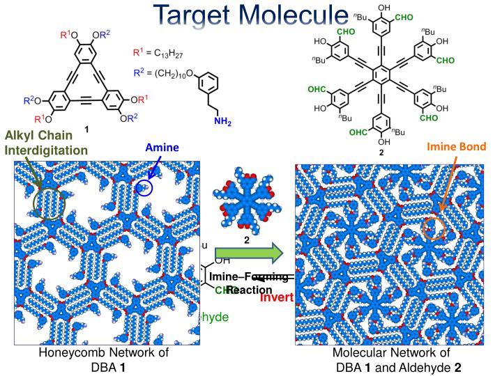 Target Molecule
