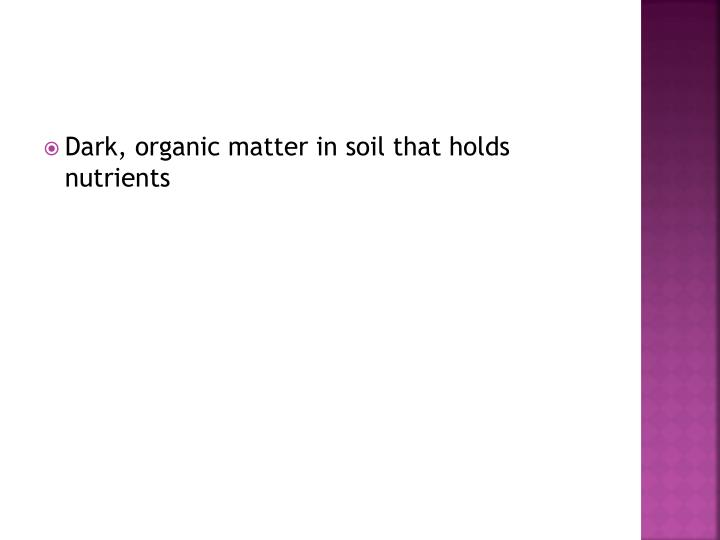 Dark, organic matter in soil that holds nutrients