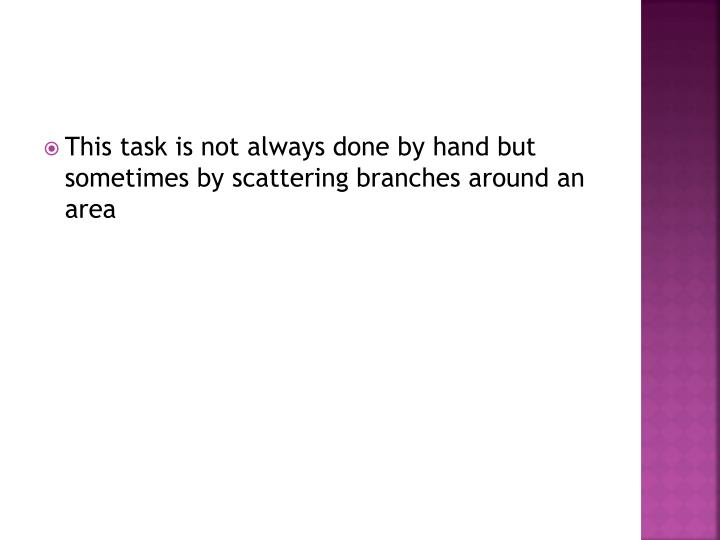 This task is not always done by hand but sometimes by scattering branches around an area