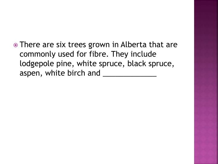 There are six trees grown in Alberta that are commonly used for
