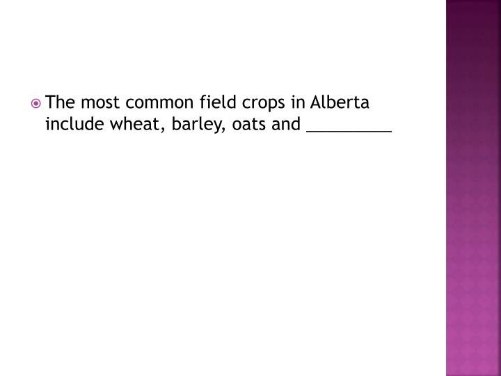 The most common field crops in Alberta include wheat, barley, oats and _________